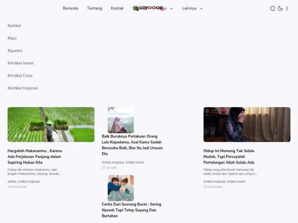 citogok.com